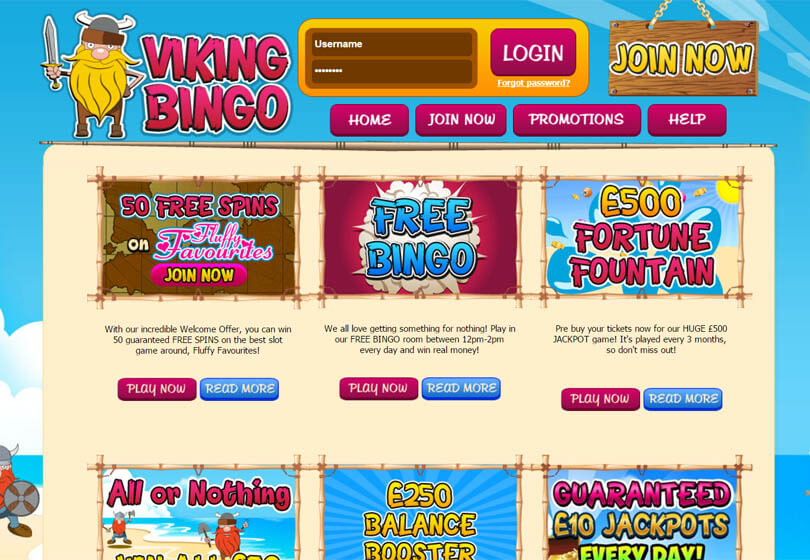 Viking Bingo Games