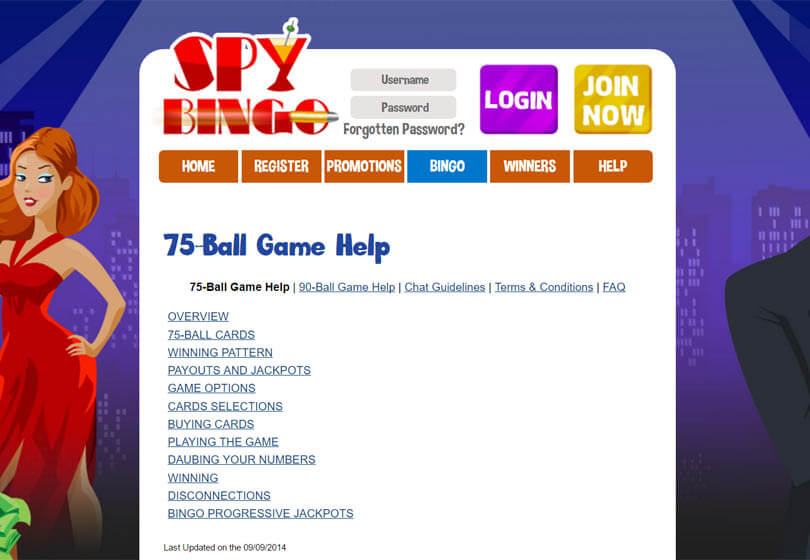 Spy Bingo Games