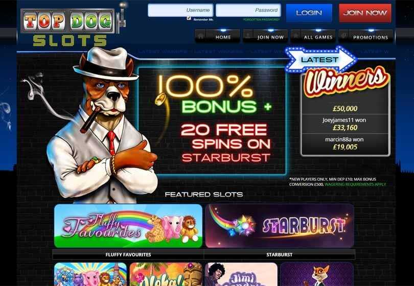 Top Dog Slots Homepage