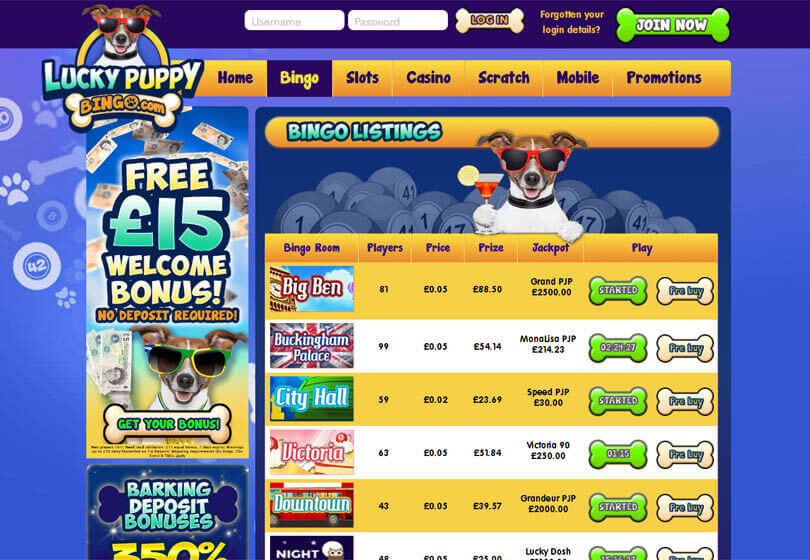 Lucky Puppy Bingo Games