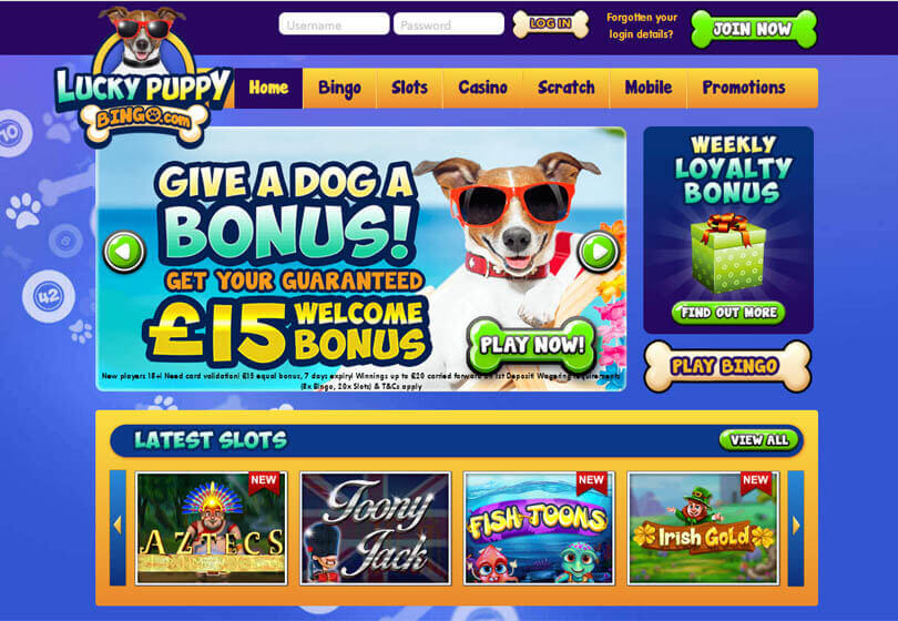 Lucky Puppy Bingo Homepage